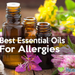 The 5 Best Essential Oils For Allergies