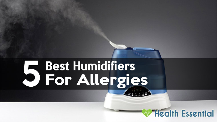 5 Best Humidifiers For Allergies Sinus Problems Amp Asthma