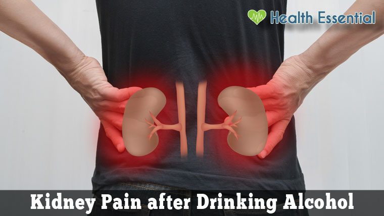 Kidney Pain After Drinking Alcohol Causes And Remedies