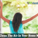 8 Best Ways To Purify Home Air Naturally