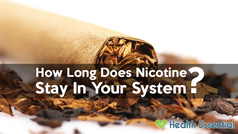 How Long Does Nicotine Stay In Your System Blood Urine