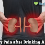 Why Do Your Kidneys Hurt after Drinking Alcohol?